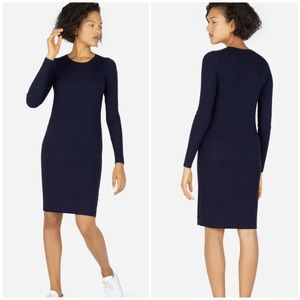 Everlane Luxe Wool Ribbed Long Sleeve Dress